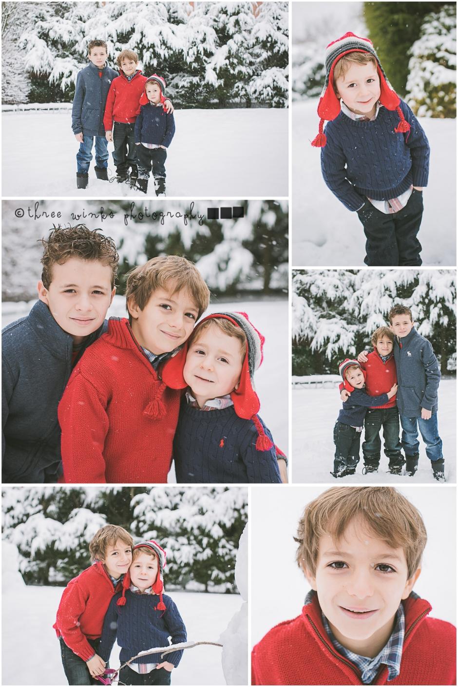 snow2015blog